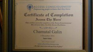 Access Bars Certificate